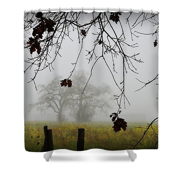 Oak Dreams Shower Curtain