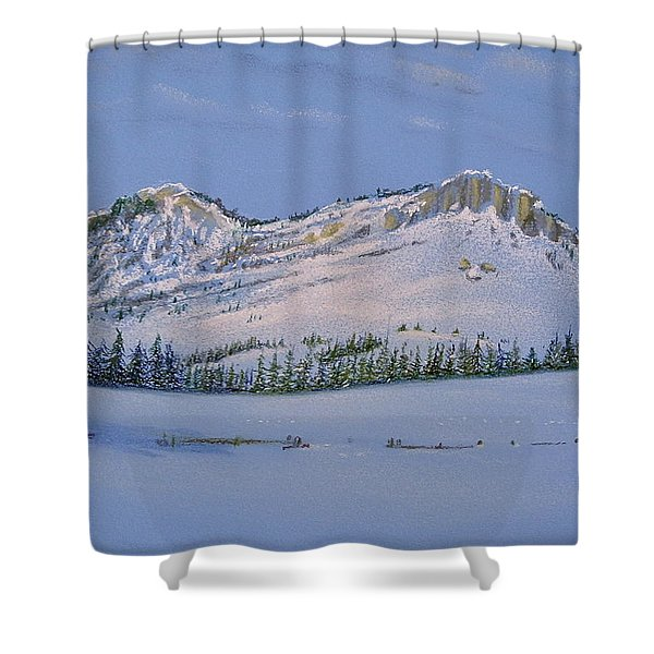 Observation Peak Shower Curtain