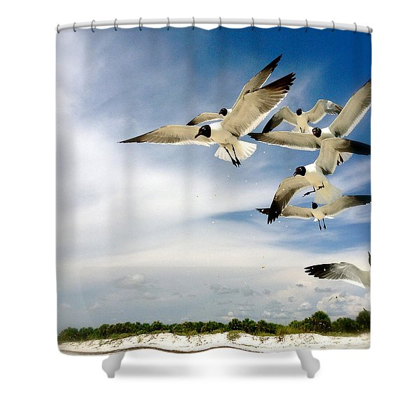Ocean Birds Shower Curtain
