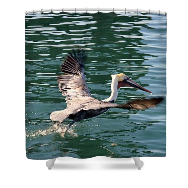 Shower Curtain featuring the photograph Oceanside  by Laurie Lundquist