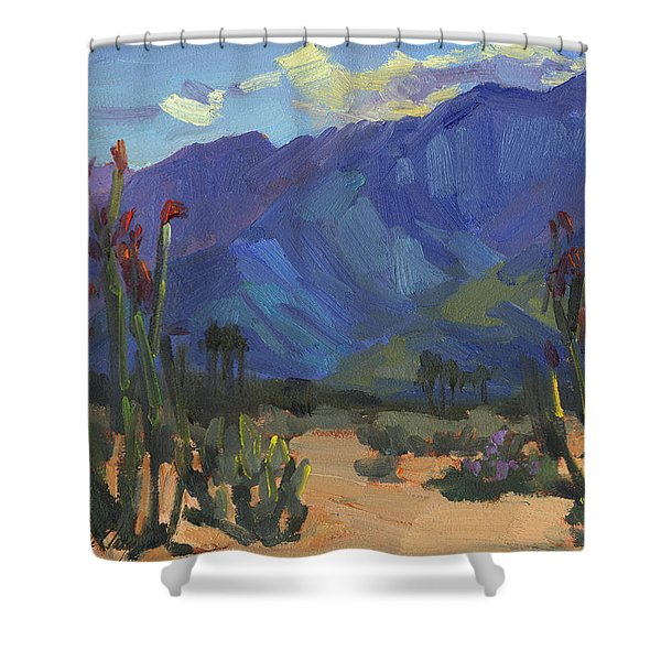 Ocotillos At Smoke Tree Ranch Shower Curtain
