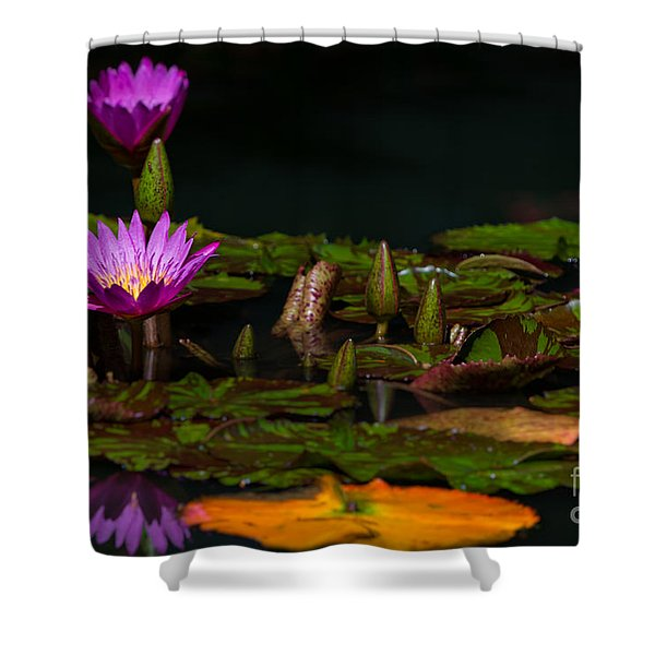 October Lilies 2 Shower Curtain