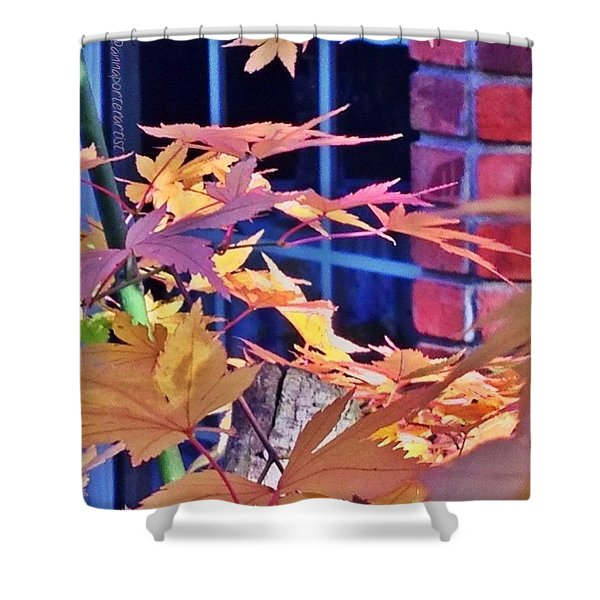 Of Maples And Bricks Shower Curtain