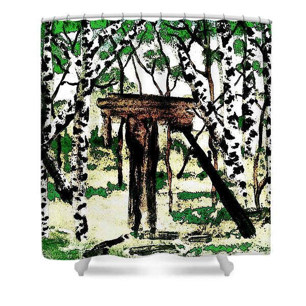 Old Obstacles Shower Curtain