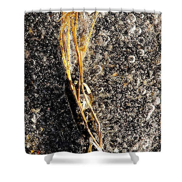 On Ice Shower Curtain