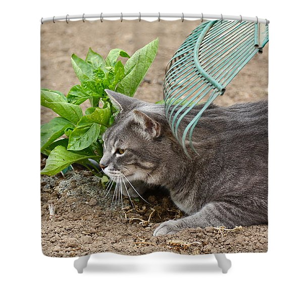 One Happy Cat Shower Curtain
