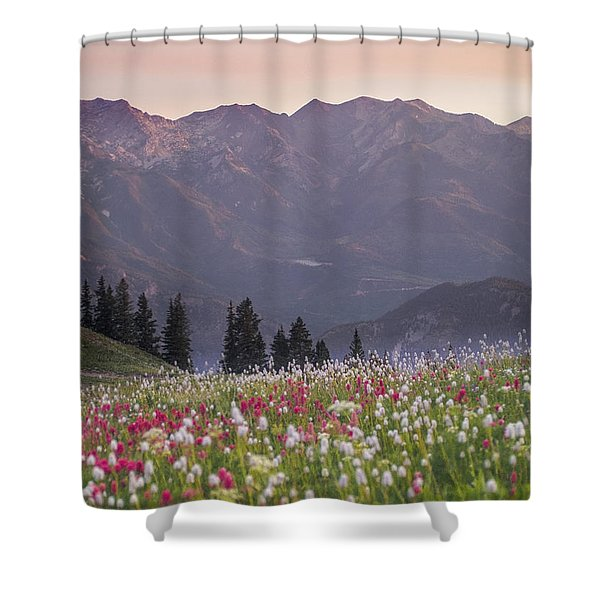 Only Opportunities Shower Curtain