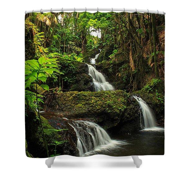 Onomea Falls Shower Curtain