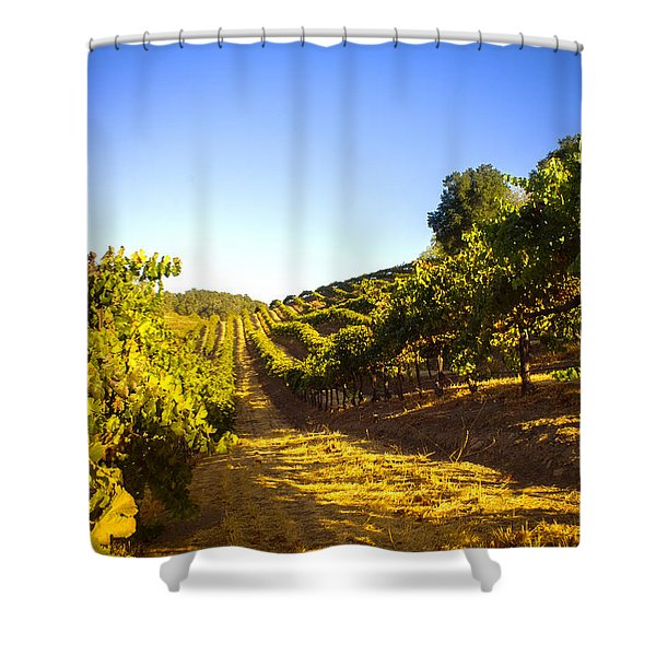 Opolo Winery Shower Curtain