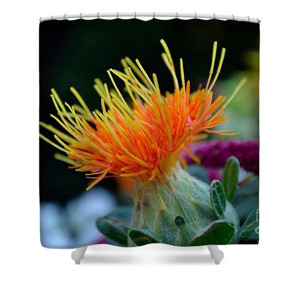 Shower Curtain featuring the photograph Orange Safflower by Scott Lyons