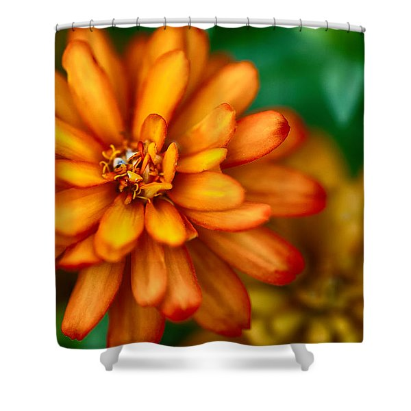Orange You Glad You're A Flower Shower Curtain