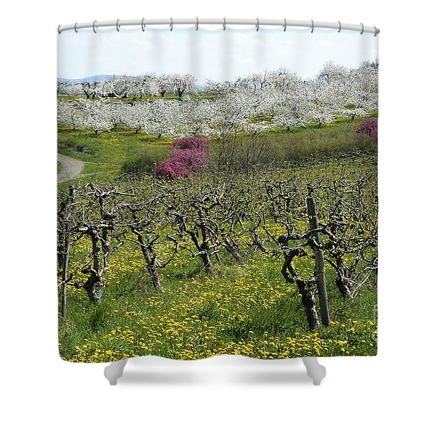 Orchard In France Shower Curtain