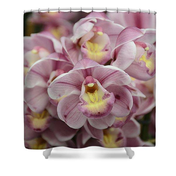 Orchid Bouquet Shower Curtain