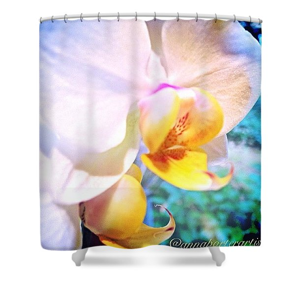 White Christmas Orchid Shower Curtain