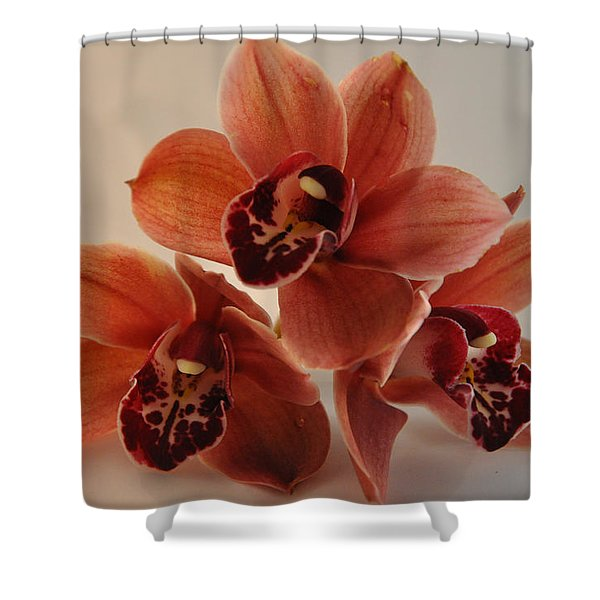 Orchid Pyramid Shower Curtain