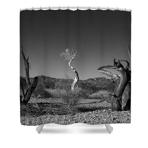 Oreo Shower Curtain