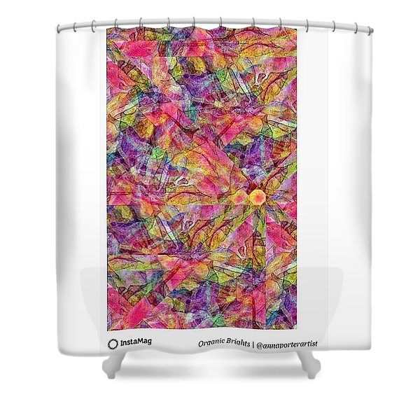 Organic Brights, A Digital Collage By Shower Curtain