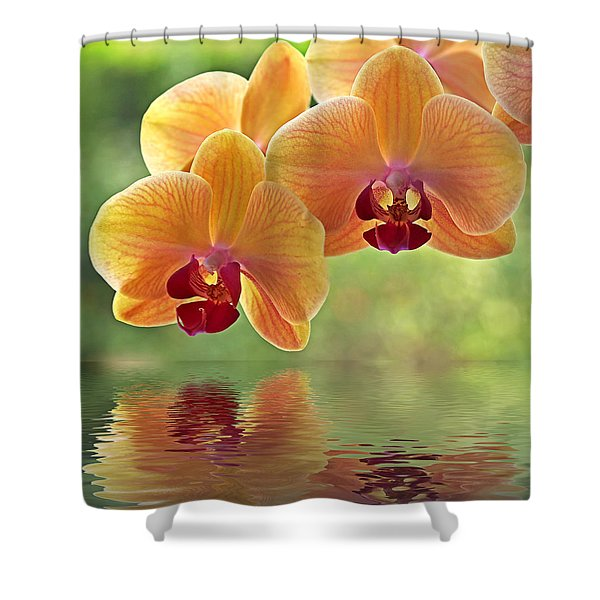 Oriental Spa - Square Shower Curtain