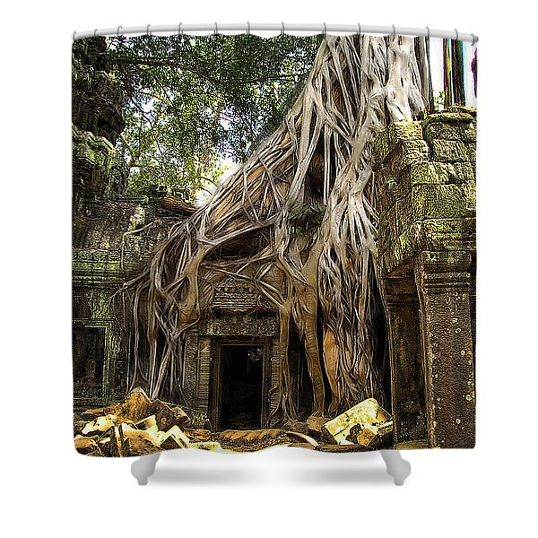 Overgrown Jungle Temple Tree  Shower Curtain