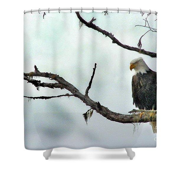 Overseeing Dinner Shower Curtain