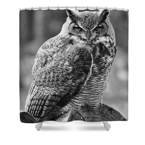 Owl In Black And White Shower Curtain