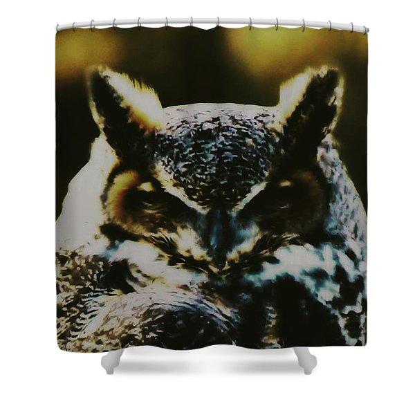 Owl Portrait Shower Curtain