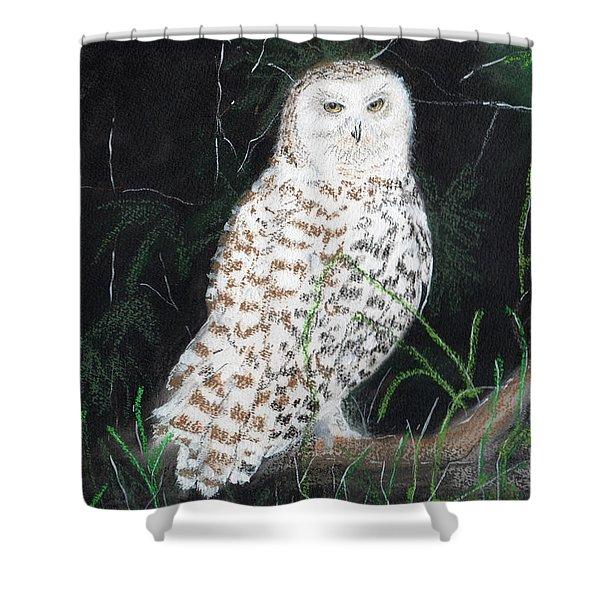 Owl Series - Owl 10 Shower Curtain