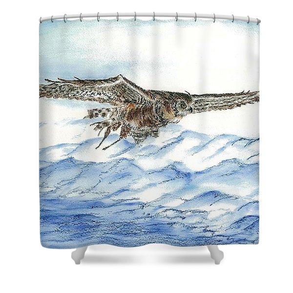 Owl Series - Owl 9 Shower Curtain