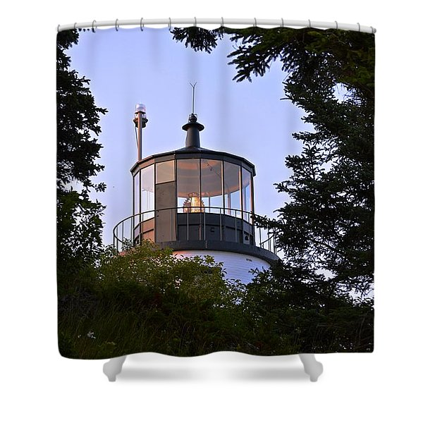 Owl's Head In The Trees Shower Curtain