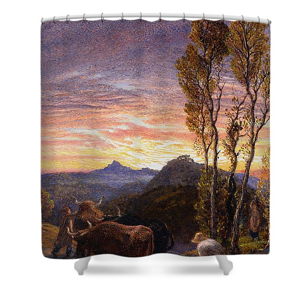 Oxen Ploughing At Sunset Shower Curtain