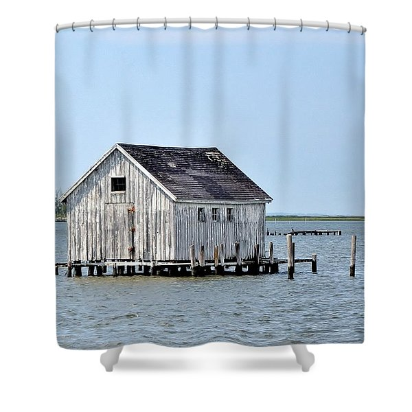 Oyster Shucking Shed Shower Curtain