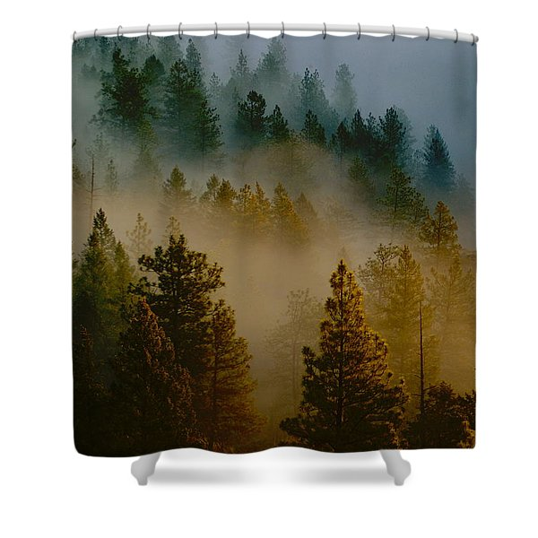 Pacific Northwest Morning Mist Shower Curtain