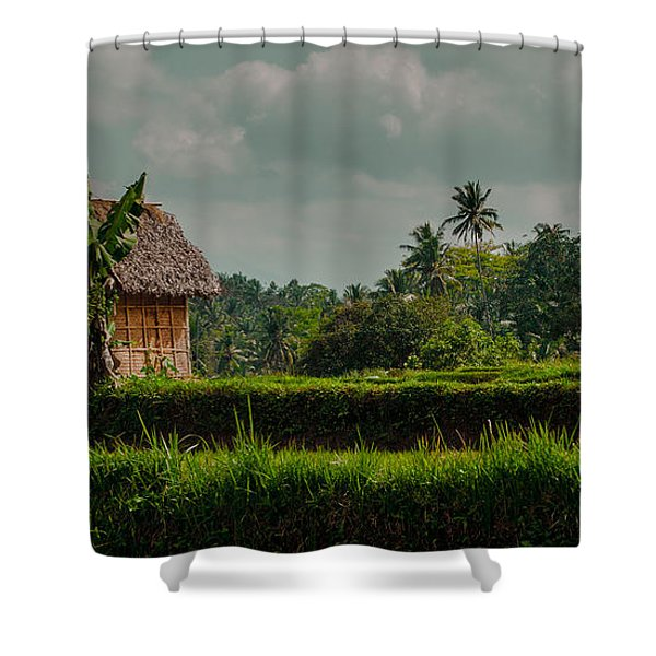 Paddy Fields Shower Curtain