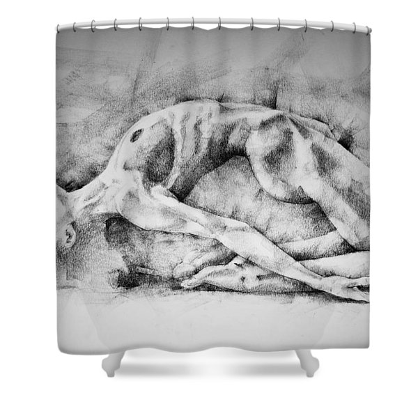 Page 6 Shower Curtain
