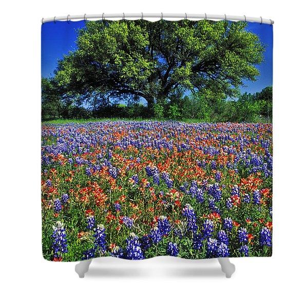 Paintbrush And Bluebonnets - Fs000057 Shower Curtain