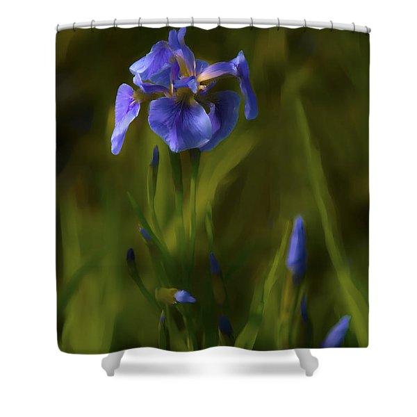 Painted Alaskan Wild Irises Shower Curtain