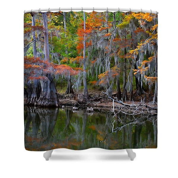 Painted Bayou Shower Curtain