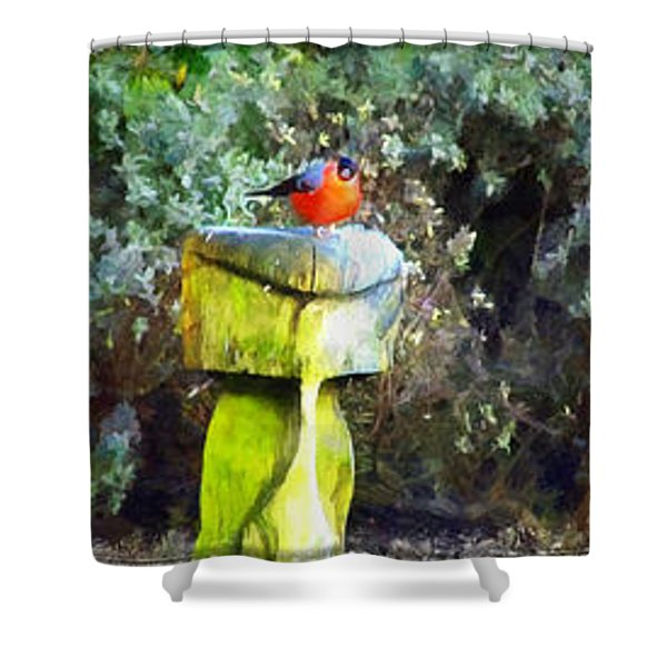 Painted Bullfinch Trio Shower Curtain