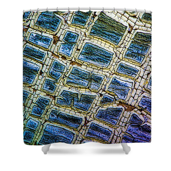 Painted Streets Number 1 Shower Curtain