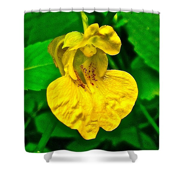 Pale Touch-me-not In Indiana Dunes National Lakeshore-indiana  Shower Curtain