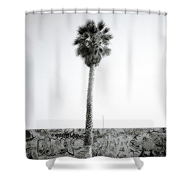 Palm Tree And Graffiti Shower Curtain