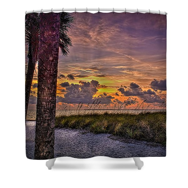 Palms Down To The Beach Shower Curtain