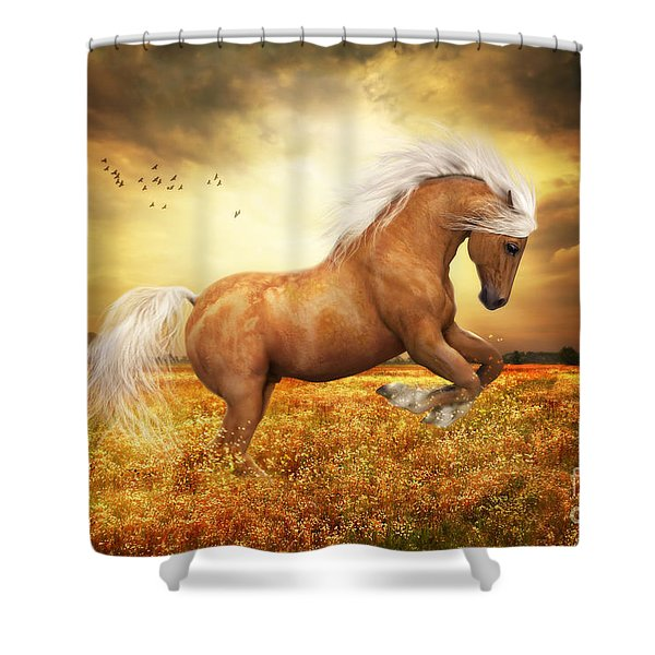 Palomino Horse Sundance  Shower Curtain