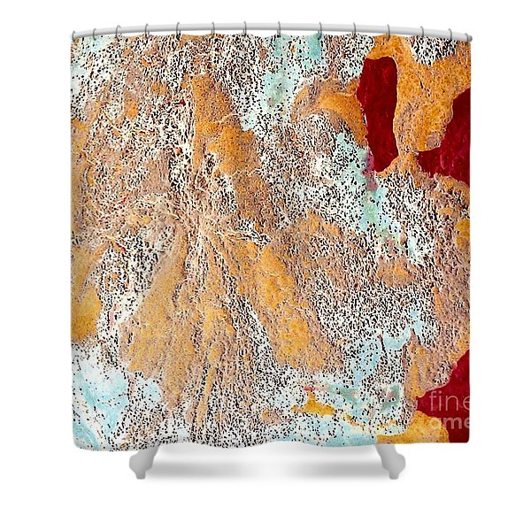 Paradigm Shift Shower Curtain