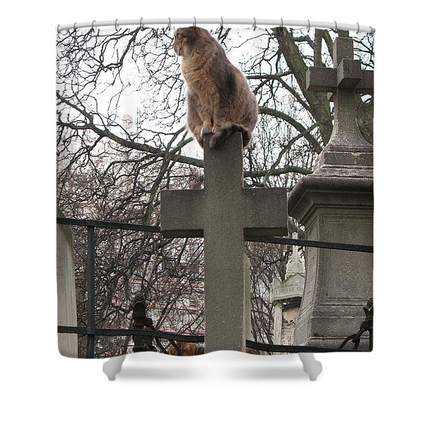 Paris Cemetery Cats - Pere La Chaise Cemetery - Wild Cats On Cross Shower Curtain