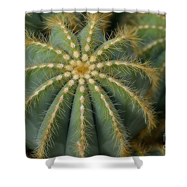 Shower Curtain featuring the photograph Parodia Magnifica by Scott Lyons