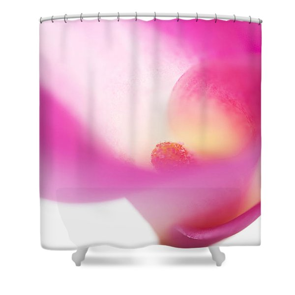 Passion For Flowers. Pink Veil Shower Curtain