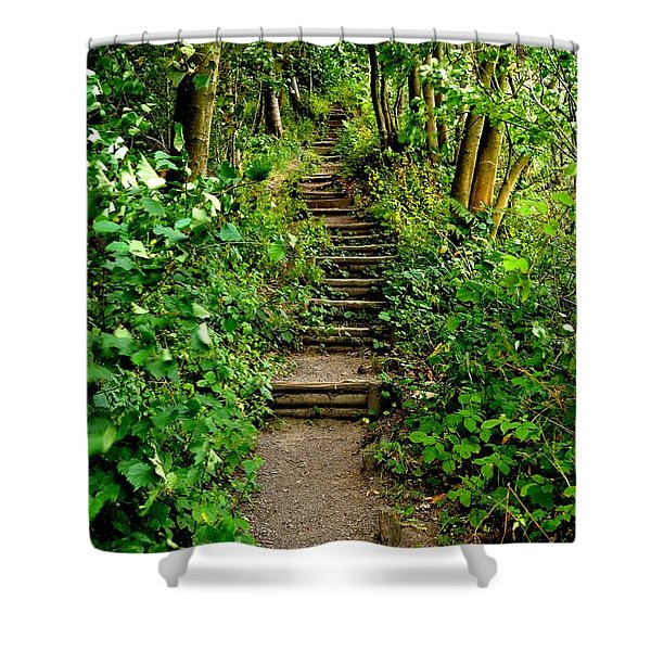 Shower Curtain featuring the photograph Path Into The Forest by Scott Lyons