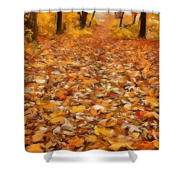 Path Of Fallen Leaves Shower Curtain