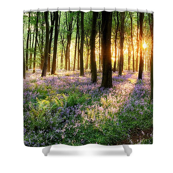 Sunrise Path Through Bluebell Woods Shower Curtain